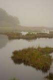 Manhã nevoenta em Maine litoral Foto de Stock