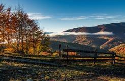 manhã nevoenta lindo no campo montanhoso fotos de stock royalty free