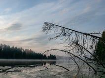 manhã nevoenta na área do lago fotos de stock royalty free