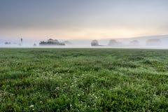 Manhã nevoenta na paisagem do embaçamento fotos de stock royalty free