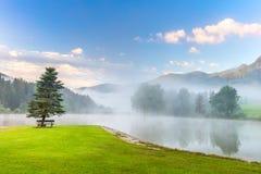 Manhã nevoenta na paisagem do lago das montanhas com árvore e banco foto de stock royalty free