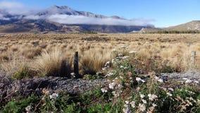Manhã nevoenta na passagem de Arthurs, Nova Zelândia imagens de stock