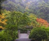 Manhã nevoenta no jardim japonês Fotos de Stock Royalty Free