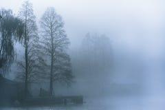 Manhã nevoenta no lago Imagens de Stock