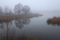 Manhã nevoenta no lago Foto de Stock