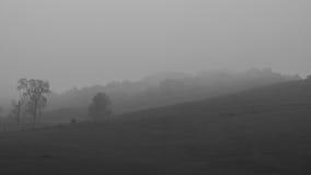Manhã nevoenta nos montes Fotografia de Stock Royalty Free