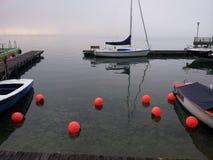 Manhã nevoenta por um lado do lago Imagens de Stock Royalty Free