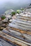 Manhã nevoenta ventosa no lago Imagem de Stock Royalty Free