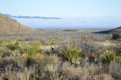 Manhã no deserto alto do parque nacional de curvatura grande, Texas Fotografia de Stock Royalty Free
