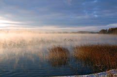 Manhã no lago Imagens de Stock Royalty Free