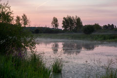 Manhã no lago da floresta Imagens de Stock