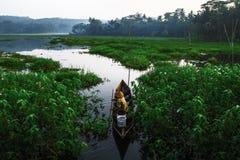 Manhã no lago Rawapening Imagens de Stock Royalty Free