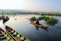 Manhã no lago Rawapening Imagem de Stock Royalty Free