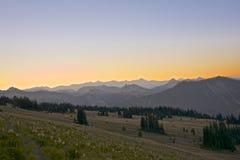 Manhã no Mt rainier fotografia de stock