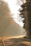 Manhã no outono Fotos de Stock Royalty Free
