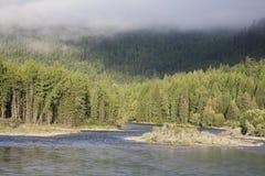 Manhã no rio Fotografia de Stock Royalty Free