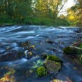 Manhã no rio imagem de stock