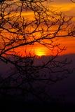 Nascer do sol da manhã Imagens de Stock
