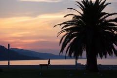 Manhã, Riviera francês, França, Europa Foto de Stock Royalty Free