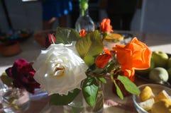 Manhã roses3 Fotografia de Stock Royalty Free