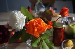 Manhã roses9 Fotografia de Stock Royalty Free