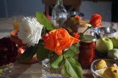 Manhã roses8 Imagens de Stock Royalty Free