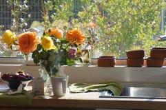 Manhã roses1 Imagens de Stock