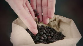 Manhänder som rymmer kaffebönor i kanfassäck och några som ner faller, skottultrarapid, jordbruk och näring stock video