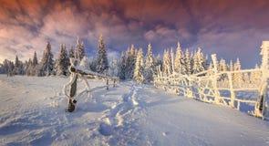 Manhã colorida do inverno nas montanhas Imagem de Stock Royalty Free