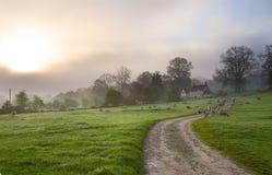 Manhã de Gloucestershire Foto de Stock Royalty Free