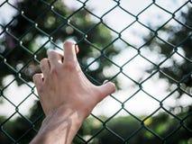 Manhand som är hållande på staketet för chain sammanlänkning som minns mänskliga rättigheter Da arkivfoto