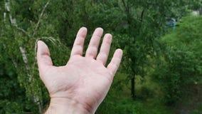 Manhand under regnet som samlar regndroppar stock video