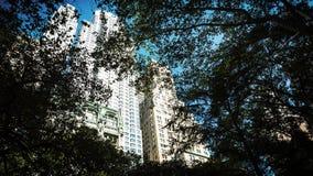 Manhattan arkitektur Sikt från St Pauls Churchyard arkivbild