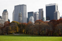 Manhattan buildings from Central Park. Royalty Free Stock Images