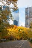 Manhattan byggnad bak gula träd Royaltyfri Foto