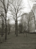Manhattan central park Royalty Free Stock Images
