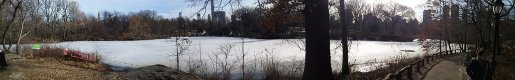 Panorama central park in the winter stock images