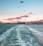 Manhattan de observación desaparece en Staten Island Ferry fotografía de archivo