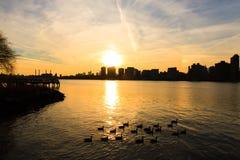 Manhattan en la puesta del sol fotografía de archivo libre de regalías