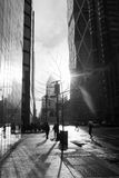 Manhattan glimpse -  New York. Black and white on the 5th avenue - sunset Royalty Free Stock Photos