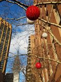 Midtown holiday cityscape. Ornaments on tree branches below Empire State Building tall office buildings. Manhattan morning in December. Red and white globe light royalty free stock image