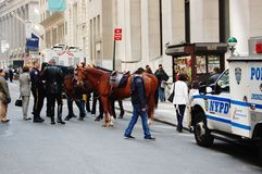 manhattan mounted police at rest Royalty Free Stock Photography