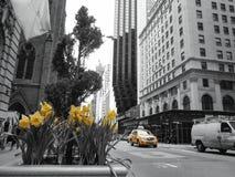 manhattan New York Arkivfoto