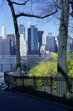 Manhattan New York Financial District USA. Manhattan viewed over fresh Spring foliage decorating the Brooklyn Heights Promenade royalty free stock photo