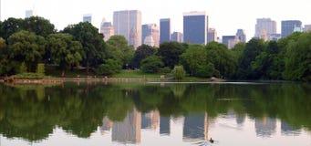Manhattan Panoramic Royalty Free Stock Photo