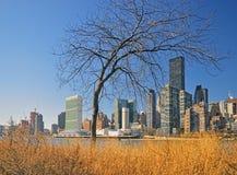 Manhattan. Stock Images