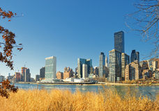 Manhattan. Royalty Free Stock Images