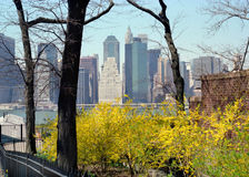 Manhattan Waterfront New York USA. Brooklyn Heights view of Manhattan stock photography