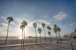 Manhattan Wyrzucać na brzeg molo z aplm drzewami wzdłuż plaży w Californ obraz royalty free