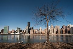 Manhattanin le ressort Photo stock